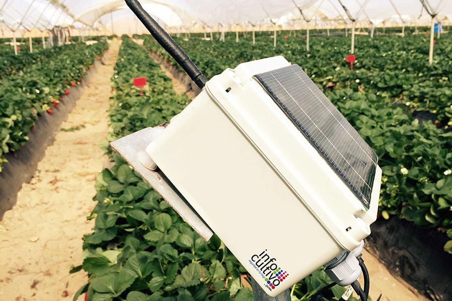 Tecnología de riego en el Condado de Huelva