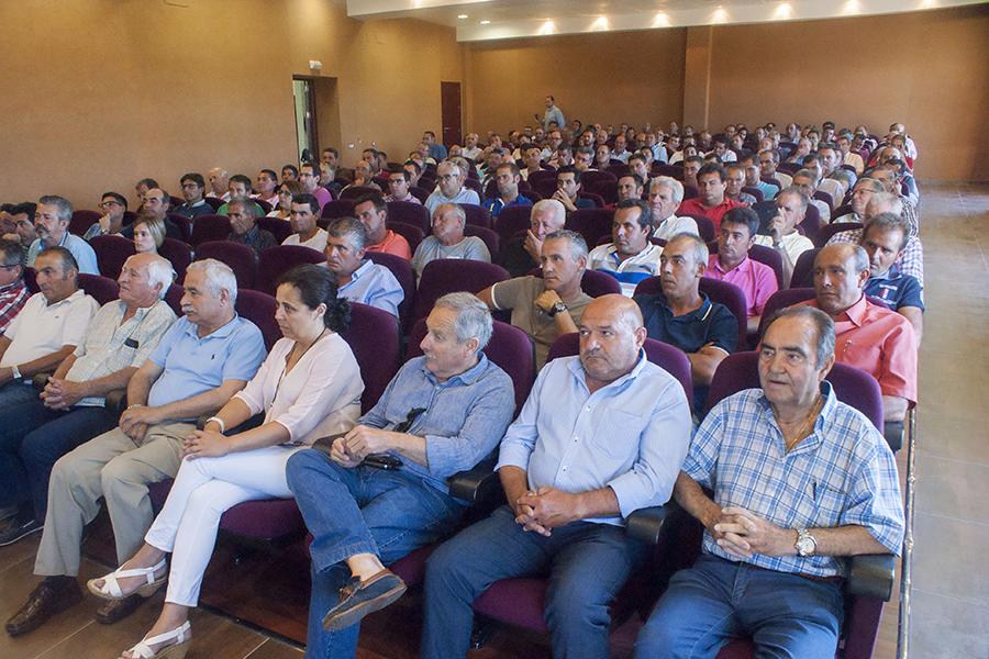 La Plataforma urge a que se celebre la reunión tripartita con el Gobierno y la Junta de Andalucía